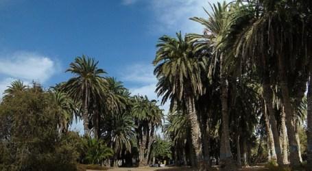 Ben Magec organiza una visita al Parque Tony Gallardo de Maspalomas