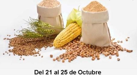 El PSOE de Santa Lucía de Tirajana organiza una recogida de alimentos no perecederos