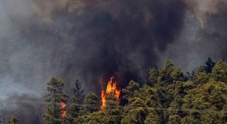 El Cabildo de Gran Canaria moviliza un amplio dispositivo para controlar el fuego en Tejeda