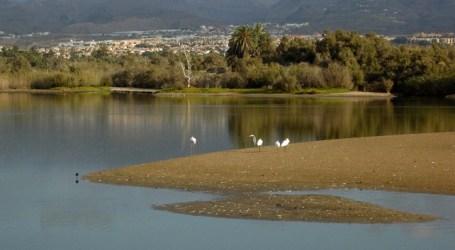 Aprobado el proyecto de señalización de las Dunas de Maspalomas