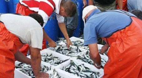 NC de Mogán se opone a que barcos marroquíes descarguen pescado en La Luz