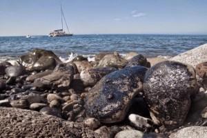 Oleg Naydenov, fuel en la costa