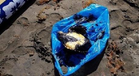 Siguen llegando manchas de hidrocarburos a las playas del sur de Gran Canaria