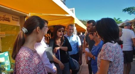 El Cabildo de Gran Canaria estudiará potenciar y modernizar las ZCA en Mogán