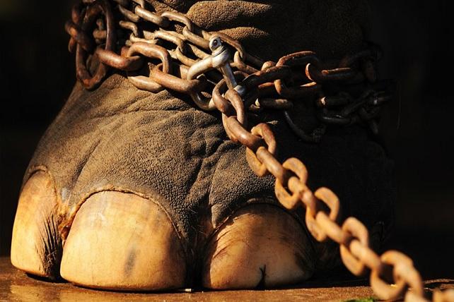 Circo sin animales (foto: español.rfi.fr)