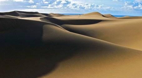 Canarias continúa liderando en enero la llegada de visitantes a España