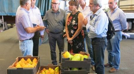 Santa Lucía quiere que el sector turístico consuma productos agrícolas locales