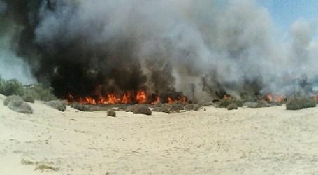 Apuntan a la intencionalidad del fuego de Fataga y a la imprudencia el de las Dunas