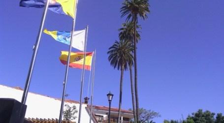 El pleno de Santa Lucía solicita más protección de la Palmera Canaria