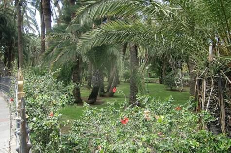 Jardines del Oasis Maspalomas