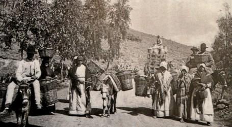 Mujeres y soberanía alimentaria
