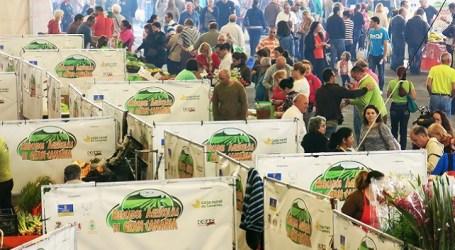 El Mercado Agrícola de Vecindario celebra su VIII aniversario con cochino negro y sorteos