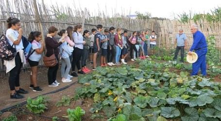 Estudiantes de Secundaria conocen el funcionamiento ecológico de los huertos urbanos