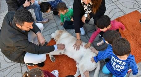 El Ayuntamiento de Mogán enseña a los más pequeños a cuidar a las mascotas y el entorno