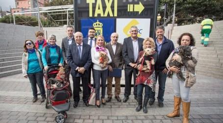 Las mascotas pueden viajar en las guaguas de Global por primera vez en Gran Canaria