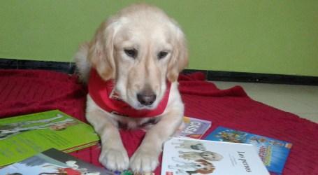 El programa del Día del Libro 2019 incluye la lectura en alta voz con perros amaestrados