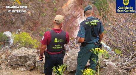 Gran Canaria se enfrenta al riesgo de un gran incendio forestal y necesita que la población evite subir a la cumbre y medianías