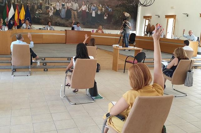 El pleno de Santa Lucía aprueba cambiar la ordenanza para agilizar y simplificar los vados y las obras En la sesión también se rechazaron las alegaciones a los Presupuestos de 2020 presentadas por el grupo Agrupación de Vecinos y el sindicato SEPCA