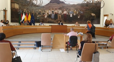 El Pleno de Santa Lucía aprueba por unanimidad la cesión del suelo municipal al Gobierno canario para viviendas sociales