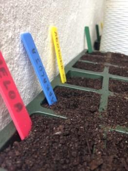Vem aí a Primavera – os meus planos para a horta!