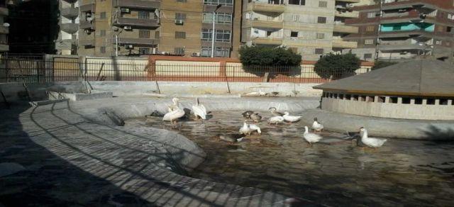 المعالم السياحية في مدينة المنصورة