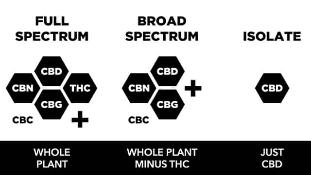 Full Spectrum CBD vs Broad Spectrum CBD vs Isolate CBD