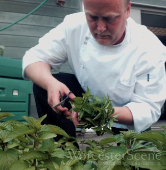 Chef Bill Nemeroff of Ceres Bistro using fresh ingredients for his dishes