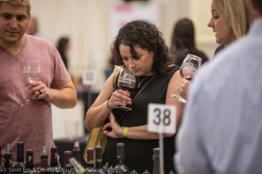 Worcester Wine Festival 2019-5888