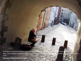 Porta svedese©massimiliano di pasquale (2) (1 pag)