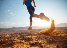 endurance-athletes-parallax-top-tall-flip-222×160