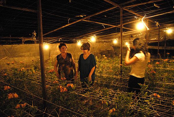 armenian_farmers_01