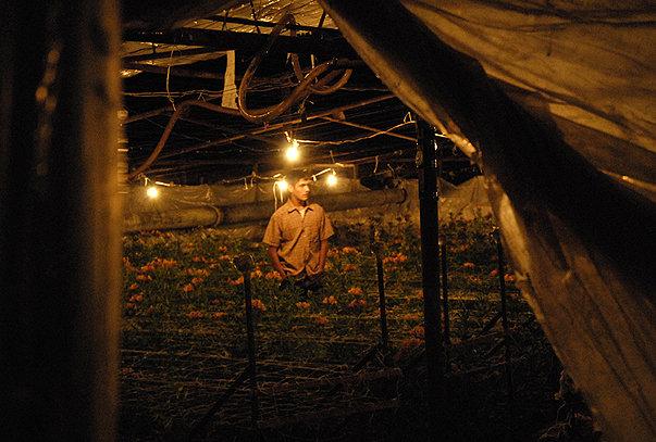 armenian_farmers_03