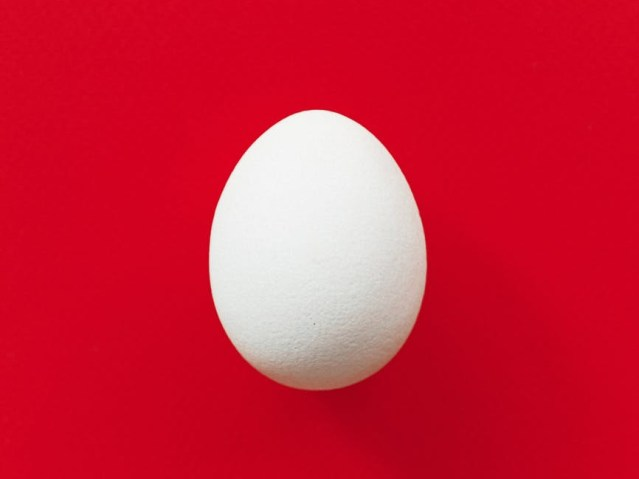 White egg on a red background.