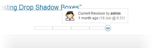 revision  feature with slider