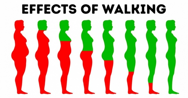 6 Things That Happen to Your Body When You Walk Every Day