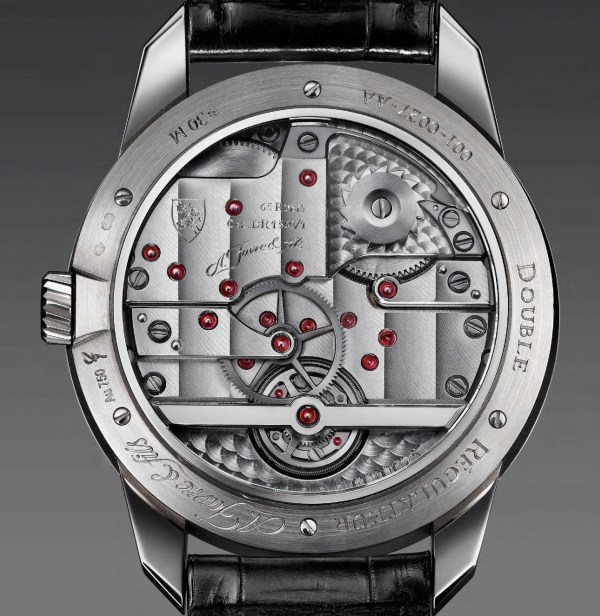 A. Favre & Fils Phoenix 10.3 (Twin Regulator with Differential Gear) watch caseback view