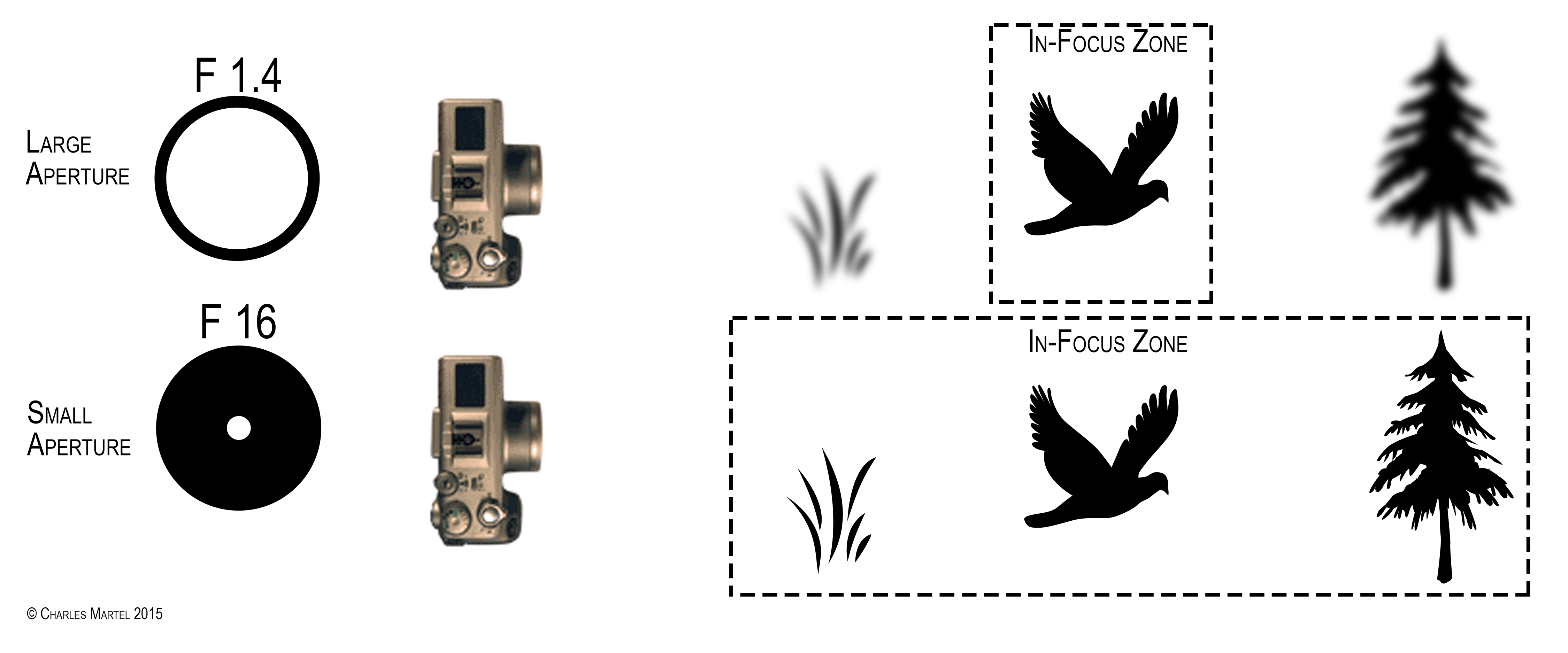 14 What Is Depth Of Field In Photography