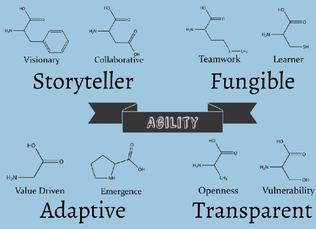 DNA of a great agile business analyst