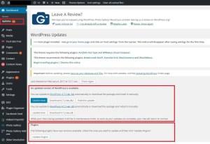 website security - wordpress updates