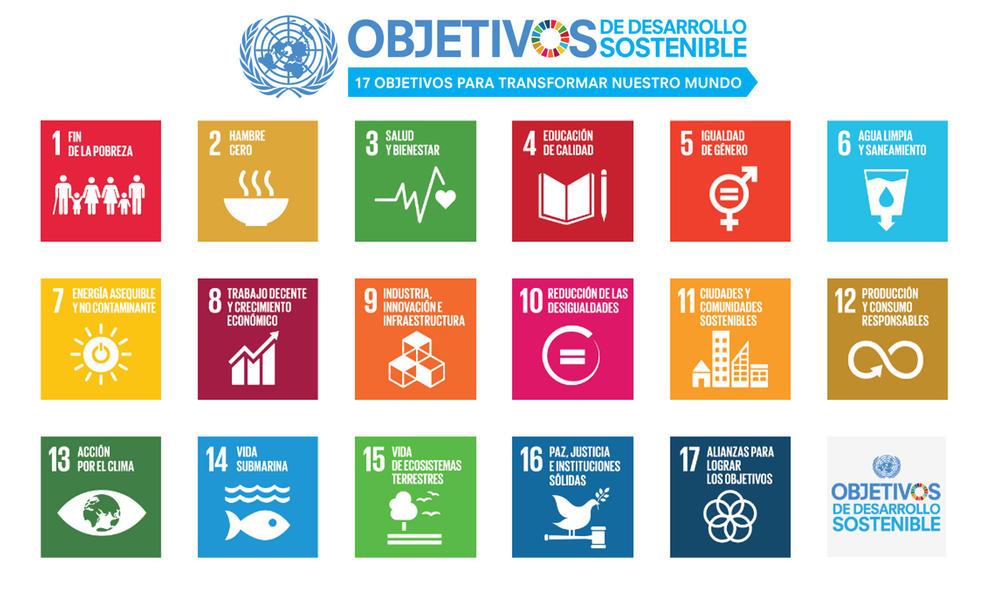 UPV entre las mejores del mundo en desarrollo sostenible