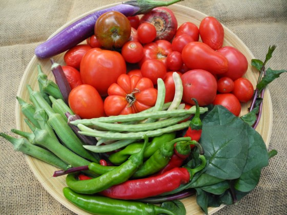 Below are several easy and tasty recipes that will allow you to get the most out of those late season summer veggies that are still producing.  Photo by Bruce Leander