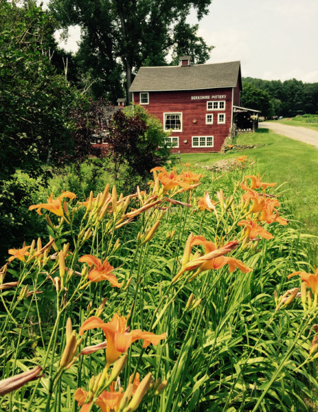 "It is believed that these orange day lilies are the descendants of the first day lilies brought to the Americas.  They grow, and spread, with abandon which has led to their common name of ""ditch lilies""."