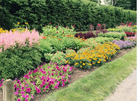 Lovely mixed annual border at FDR's grave site in Hyde park, New York