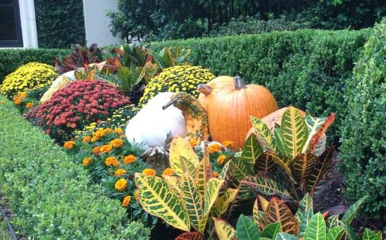 outdoor-fall-arrangement