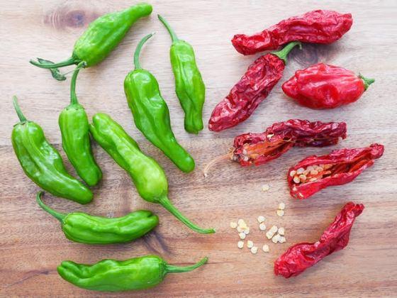 shishito-pepper