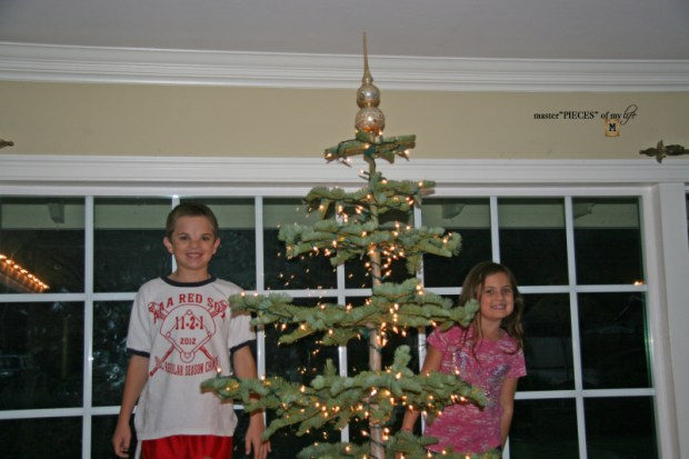 Christmas tree tradition6