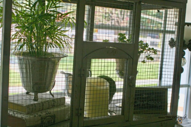 Thru the seasons - ornamental birdcage 10