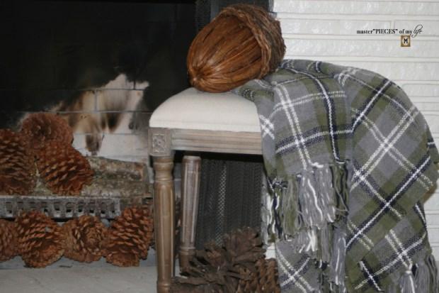 Rustic autumn mantel 8