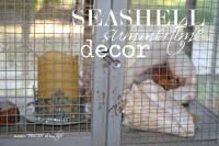 Seashell summertime decor
