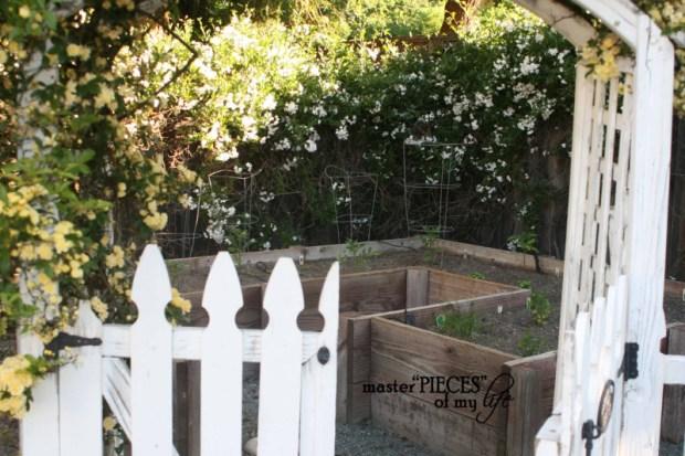 Spring gardening4